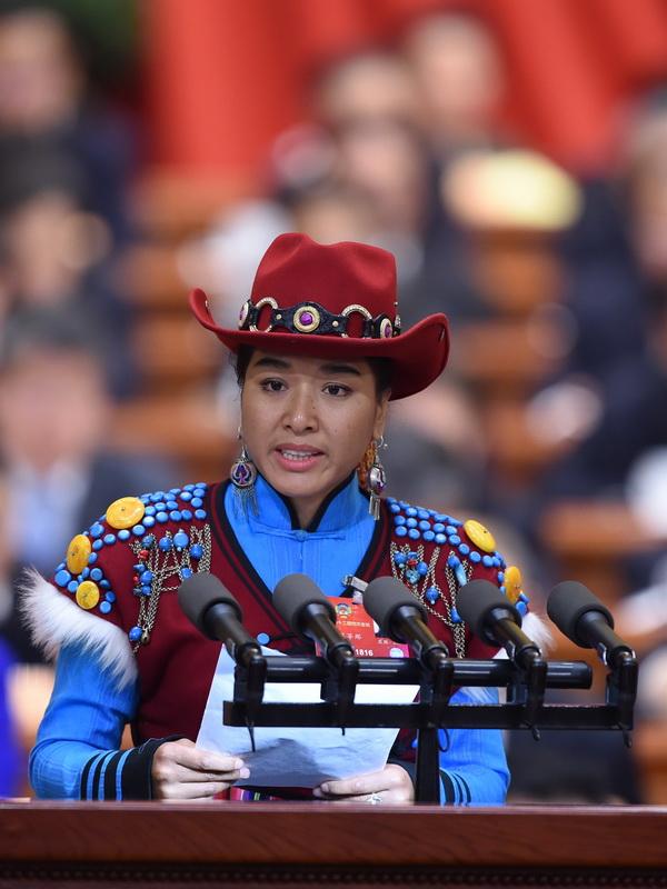 委员作 国家 五十六个民族的最大认同 的发言